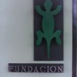 Sector Comercial - Fundacion los lagartos